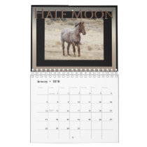 Wild Horses of Sand Wash Basin,  Colorado Calendar