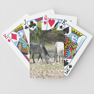 Wild Horses of the Sonoran Desert Bicycle Playing Cards
