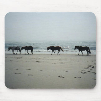 Wild horses on Assitique Island Mouse Pad