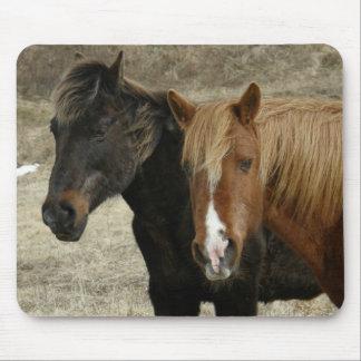 Wild Horses on Unalaska Island Mousepads