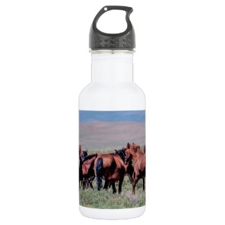 Wild Horses Out West Stainless Steel Water Bottle