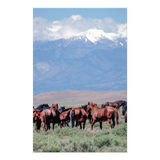Wild Horses Out West Stationery