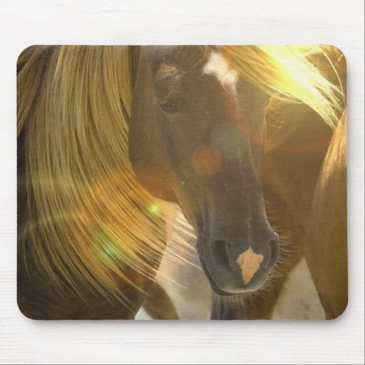 Wild Horses Photo Mouse Pad