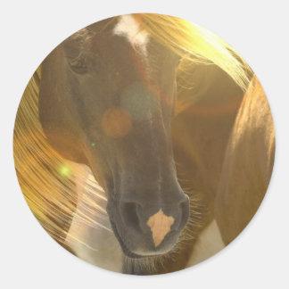 Wild Horses Photo Stickers