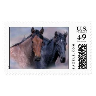 Wild Horses Postage