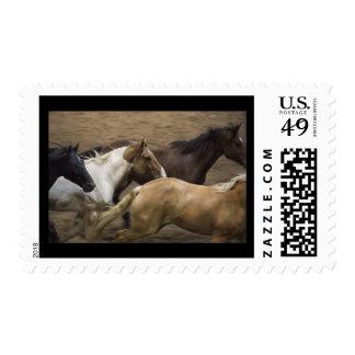 Wild Horses postage stamp