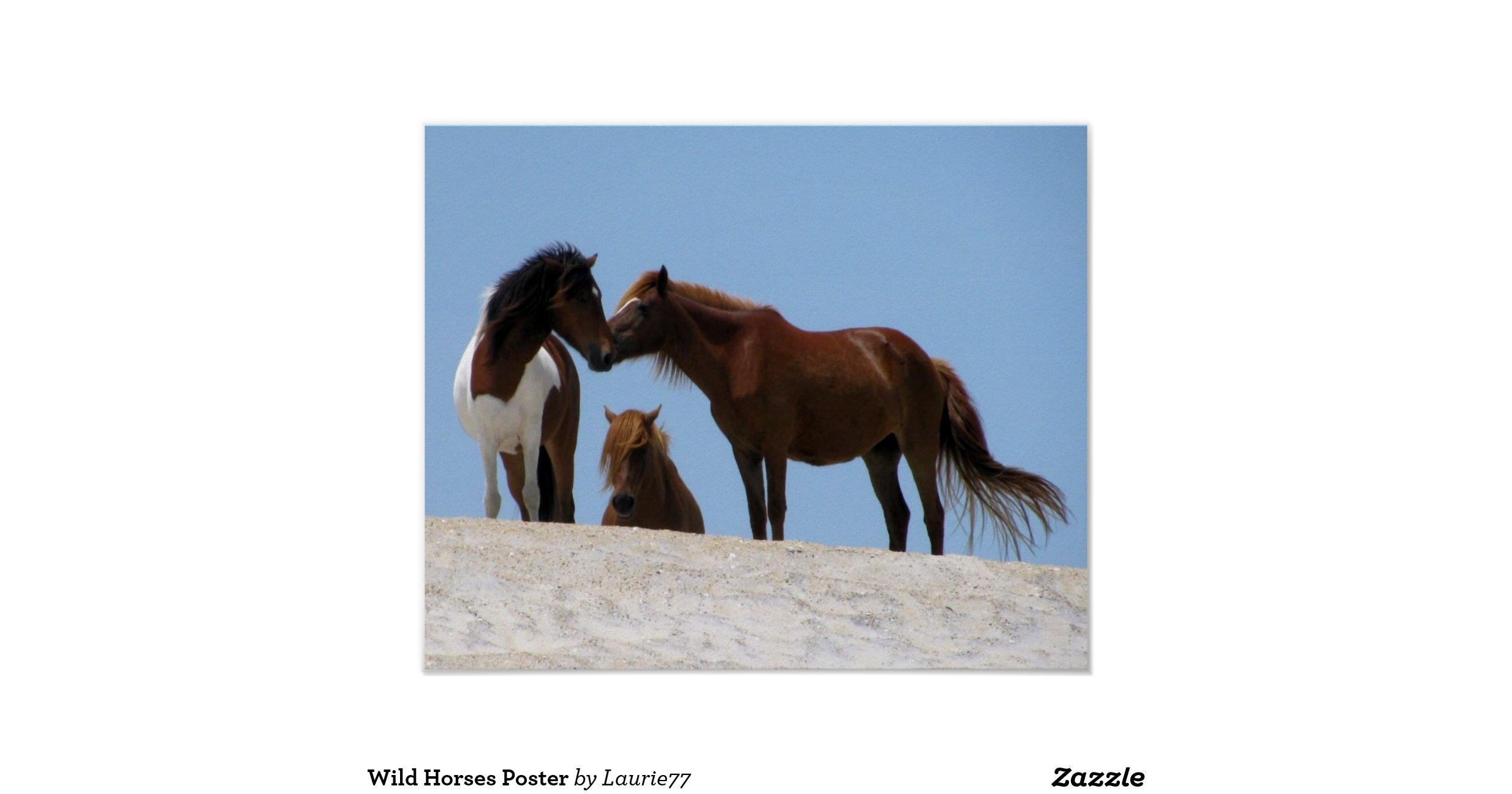 wild horse hispanic single men Meet single muslim men in wild horse is your life ready to meet a single muslim man to commit your attention to or are you only looking for someone to go see a.