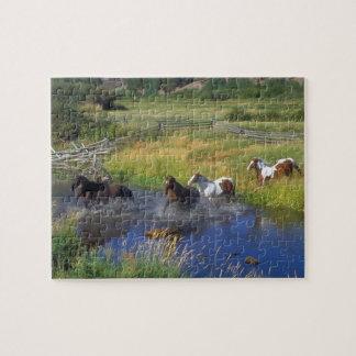 Wild Horses Puzzle
