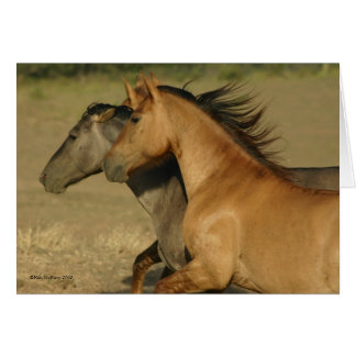 Wild Horses Returning to Freedom Greeting Card