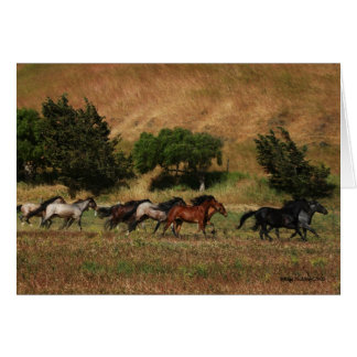 Wild Horses Running Greeting Card