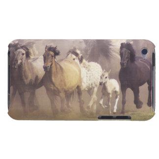 Wild horses running iPod touch case