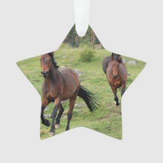 Wild Horses Running Ornament