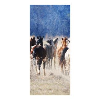 Wild horses running rack card