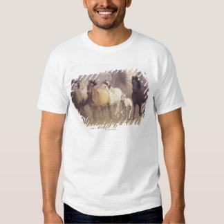 Wild horses running t shirt
