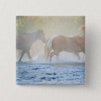 Wild horses running through water pinback button