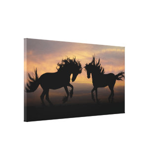 Wild Horses Silhouette Canvas Print