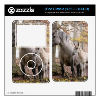 Wild Horses Decal For iPod