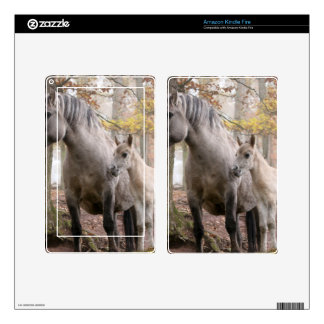 Wild Horses Skins For Kindle Fire