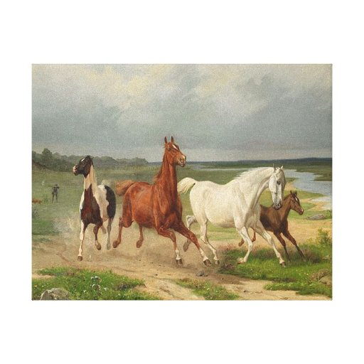 Wild Horses Stretched Canvas Prints