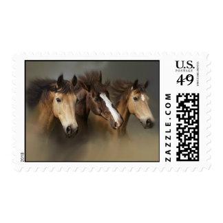 Wild Horses Three Postage