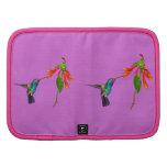 Wild Hummingbird Bird-lover's Art Series Organizers