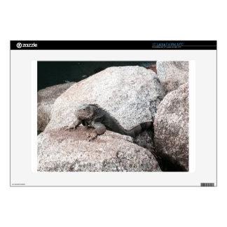 Wild Iguana Laptop Skins