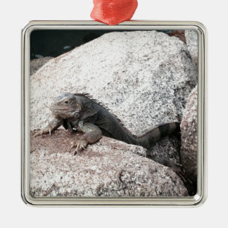 Wild Iguana Metal Ornament