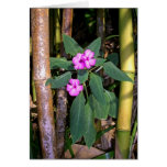 Wild Impatiens and Bamboo Greeting Card