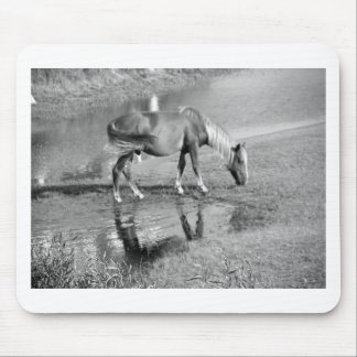 Wild in Blondie in Black & White Mouse Pad