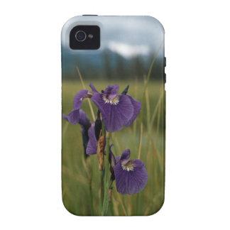 Wild Iris iPhone 4/4S Case