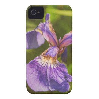 Wild Iris III iPhone 4 Case