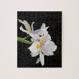 Wild Irises Puzzle