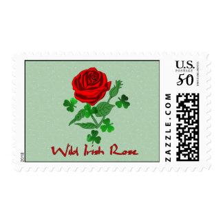 Wild Irish Rose Postage