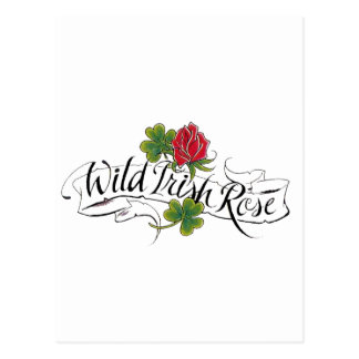 Wild Irish Rose Postcard