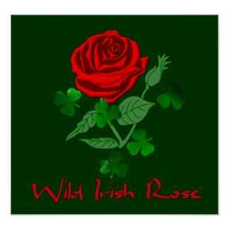 Wild Irish Rose Poster