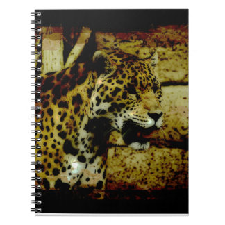 Wild Jaguar Spotted Panther Animal Lover Note Book