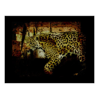 Wild Jaguar Spotted Panther Animal Lover Posters