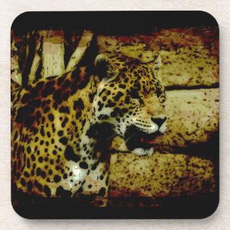 Wild Jaguar Spotted Panther Design Coaster