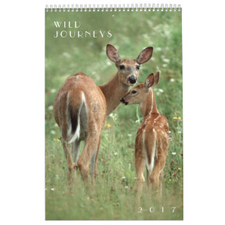 Wild Journeys 2017 Wildlife Wall Calendar
