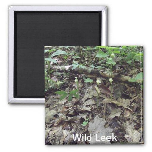 Wild Leek Magnet