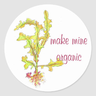 Wild Lettuce Leaves Drawing Organic Vegetables Classic Round Sticker