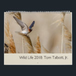 """Wild Life 2018 Calendar<br><div class=""""desc"""">Portraits of wildlife from the western United States.</div>"""