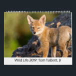 "Wild Life 2019 Calendar<br><div class=""desc"">Portraits of wildlife from the western United States.</div>"