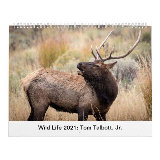 Wild Life 2021 Calendar