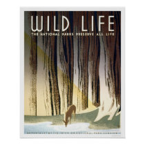 Wild Life National Park 1940 WPA Poster