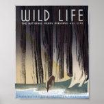 Wild Life Posters