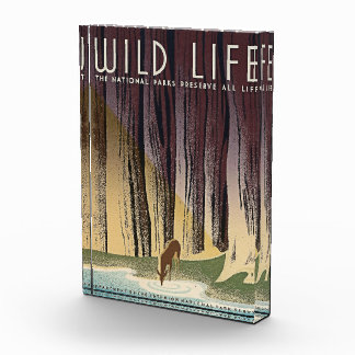 Wild Life - The National Parks preserve all Life. Acrylic Award