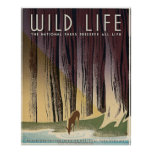 Wild Life - The National Parks preserve all Life. Poster