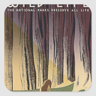 Wild Life - The National Parks preserve all Life. Square Sticker