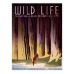 Wild life The National Parks Vintage WPA Postcard